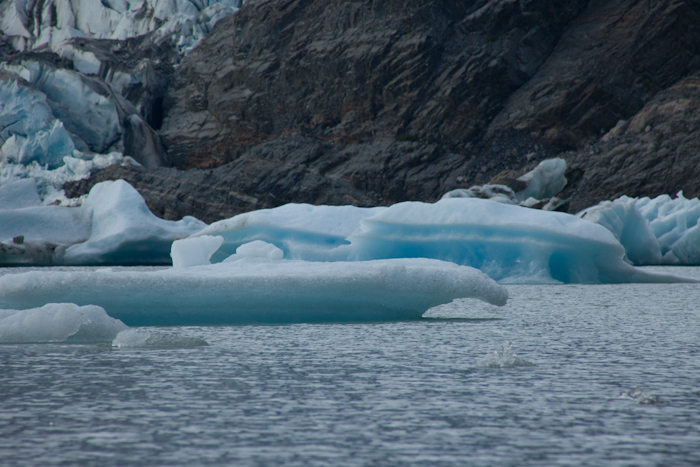 Alaska Cruise 19.jpg