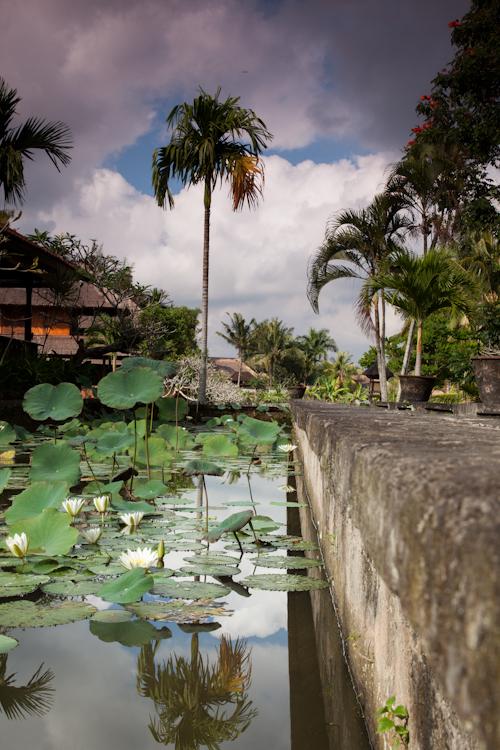 Bali 12 No wm-1782.jpg
