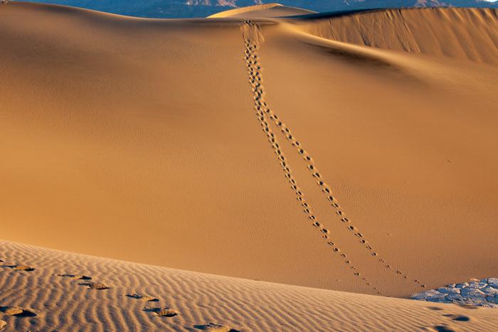 Death Valley NW 4-4497.jpg