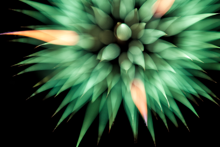 Fireworks 4-4998.jpg