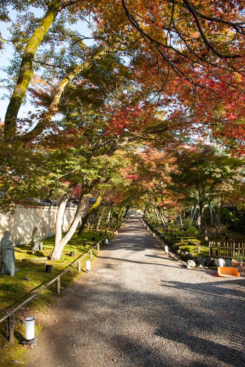 Kyoto -4082.jpg