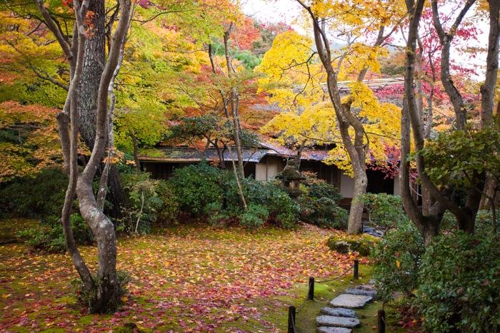 Kyoto 4-4145.jpg