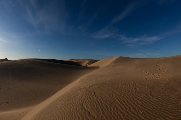 Oceano Sand Dune 11.jpg