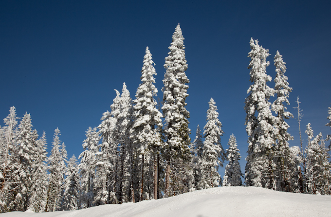 Sierra in winter 2.jpg