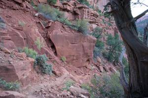 Trail 300-01322.jpg