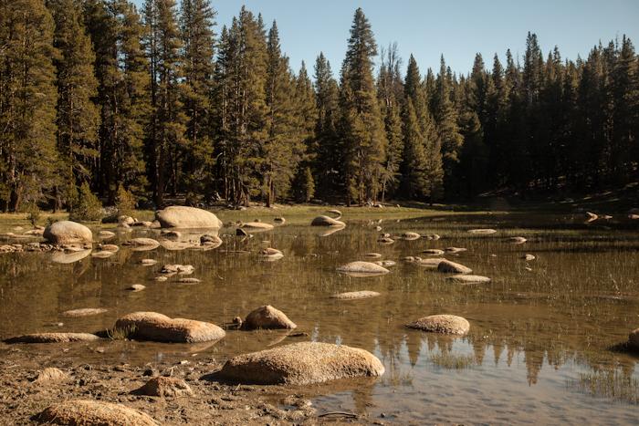 Yosemite 2.jpg