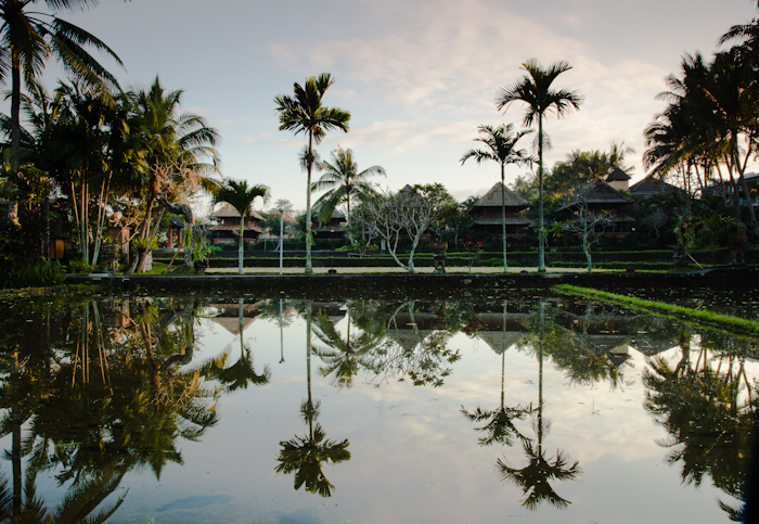 Bali-New-1751.jpg