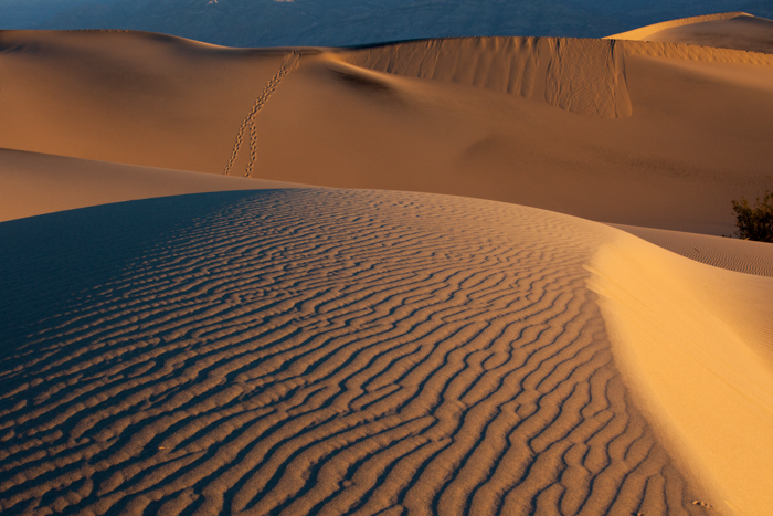 Death Valley NW 3-4490.jpg